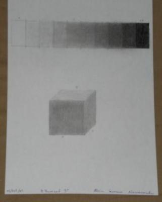Claroscuro- gamas de grises